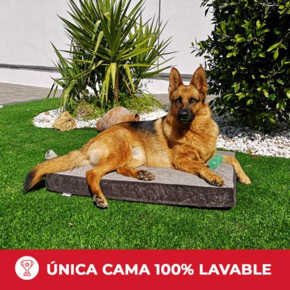 Única cama para perros 100% lavable