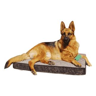 Cama para perros Lavable